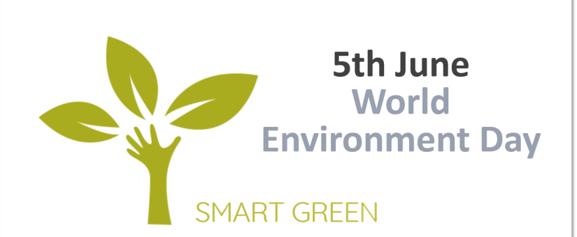 WE CELEBRATE WORLD ENVIRONMENT DAY